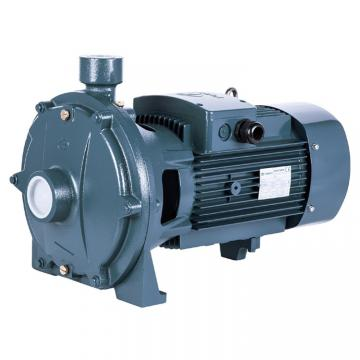 Vickers PVB15-RSW-31-CC-11-PRC Piston Pump PVB