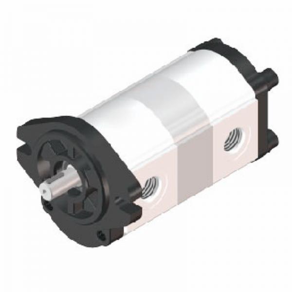 Vickers 4535V50A25 86BB22R Vane Pump #1 image